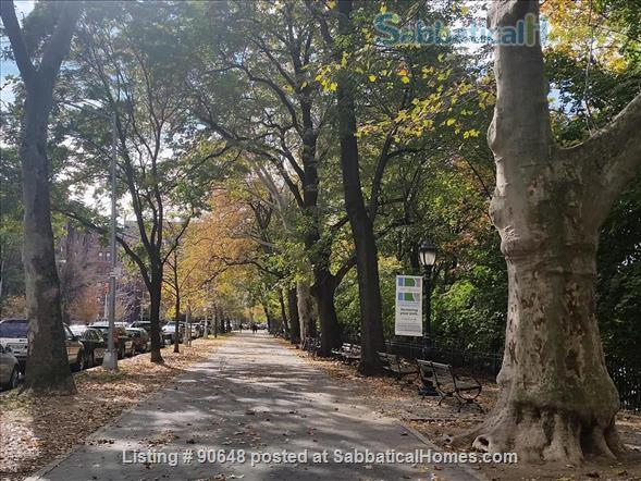 Sunny, large 2 Br, 2 Bath  Apartment  Home Rental in New York, New York, United States 1