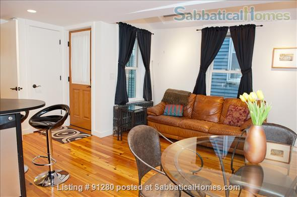Cambridge Urban Oasis Fully Furnished Apartment (1BR) near M.I.T. & Harvard Home Rental in Cambridge, Massachusetts, United States 2