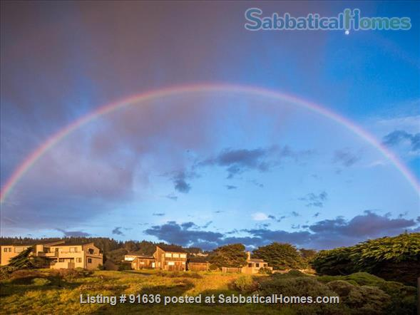 Sea Ranch Abalone Bay Ocean Front Retreat Beckons the Muse Home Rental in Sea Ranch, California, United States 0