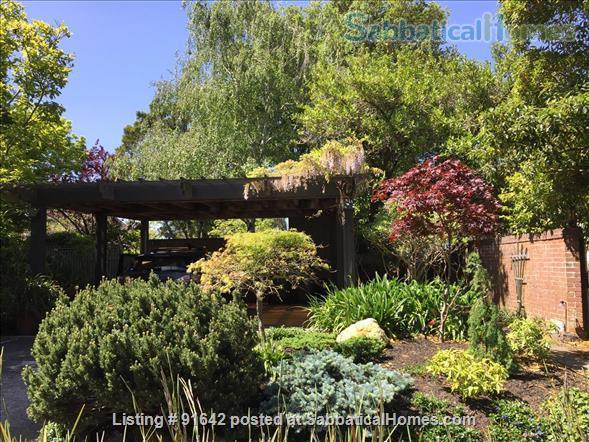 Furnished Writer's Retreat guest house  -    with Private Garden - Walk to UC Berkeley Campus.  Home Rental in Berkeley, California, United States 4