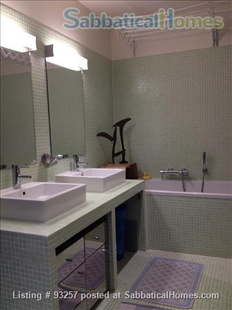 Sunny, quiet and spacious 1BD apartment near Picasso Museum Home Rental in Paris, IDF, France 3