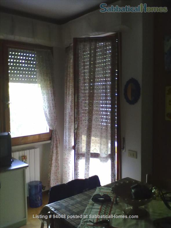 Pisa, Close to the New Hospital (Cisanello) - Departments Home Rental in Pisa, Toscana, Italy 6