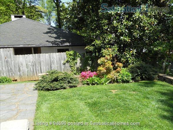 CHARLOTTESVILLE, VA:  LOVELY BRICK HOUSE NEAR UNIVERSITY Home Rental in Charlottesville, Virginia, United States 0