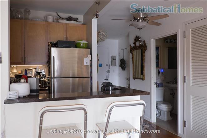 Modern, Sunny, 1 bedroom apartment  w/Balcony Home Rental in New York, New York, United States 3