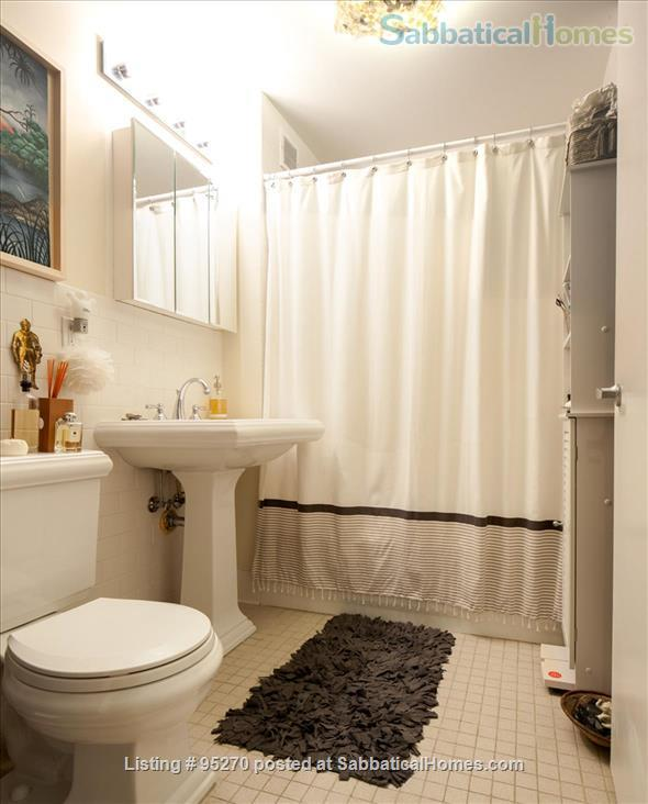 Modern, Sunny, 1 bedroom apartment  w/Balcony Home Rental in New York, New York, United States 8