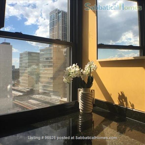AFFORDABLE LUXURY. 1 BEDROOM PENTHOUSE APARTMENT. PRIME LOCATION. PRICED TO RENT Home Rental in Philadelphia, Pennsylvania, United States 4