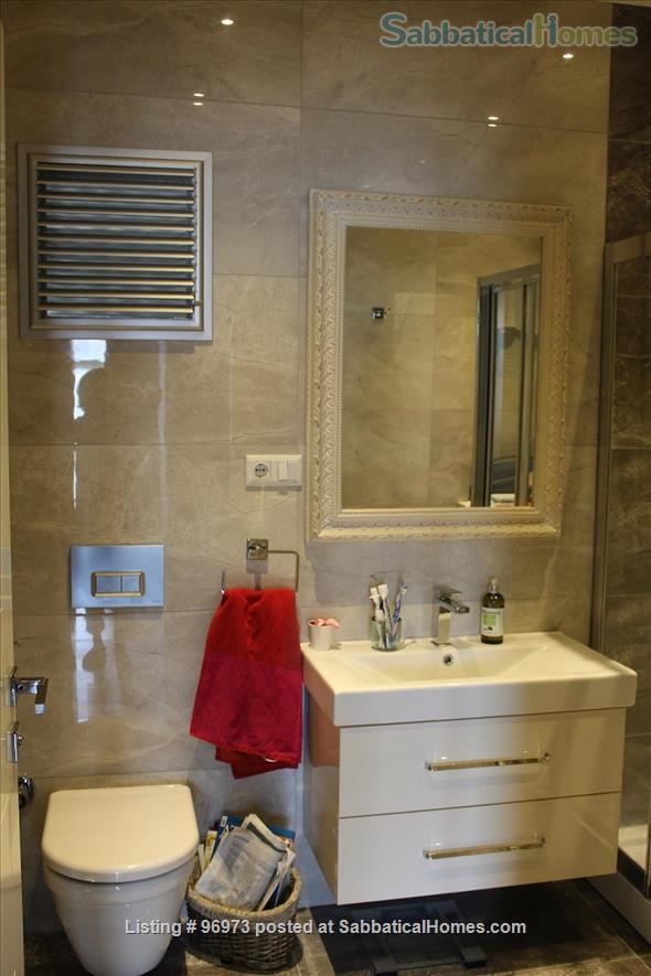 A gorgeous flat in Moda, Istanbul Home Rental in Istanbul, , Turkey 4