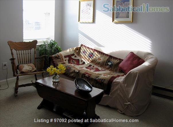 Charming Cozy COVID-19-Cleaned 1-Bedroom Downtown Washington, DC  Home Exchange in Washington, District of Columbia, United States 1
