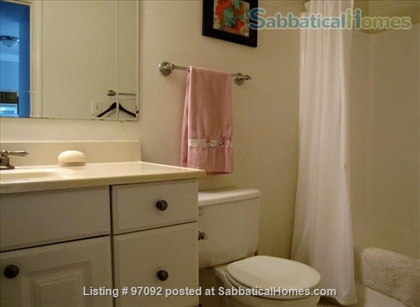 Charming Cozy COVID-19-Cleaned 1-Bedroom Downtown Washington, DC  Home Rental in Washington, District of Columbia, United States 3