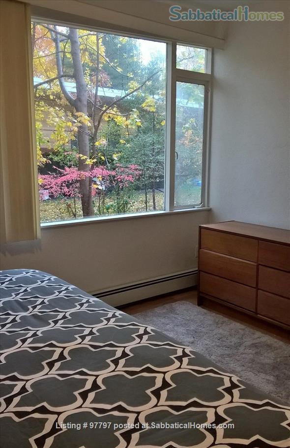 Midcentury Modern 3BR home -academic year rental Home Rental in Lexington, Massachusetts, United States 7