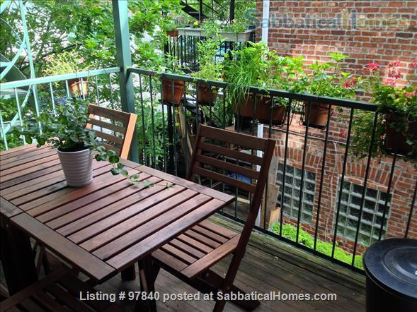 Lovely 1 BR apt in the Plateau/Parc La Fontaine  Home Rental in Montreal, Quebec, Canada 9