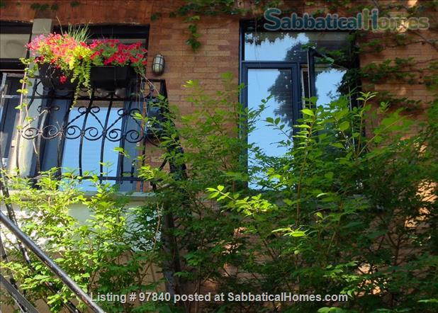 Lovely 1 BR apt in the Plateau/Parc La Fontaine  Home Rental in Montreal, Quebec, Canada 1