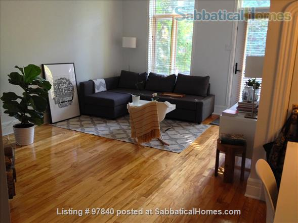 Lovely 1 BR apt in the Plateau/Parc La Fontaine  Home Rental in Montreal, Quebec, Canada 0