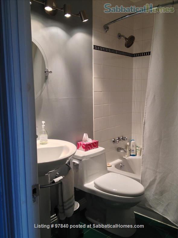 Lovely 1 BR apt in the Plateau/Parc La Fontaine  Home Rental in Montreal, Quebec, Canada 5