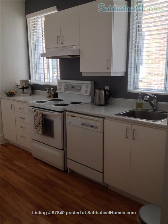 Lovely 1 BR apt in the Plateau/Parc La Fontaine  Home Rental in Montreal, Quebec, Canada 7
