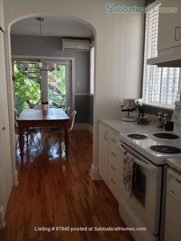 Lovely 1 BR apt in the Plateau/Parc La Fontaine  Home Rental in Montreal, Quebec, Canada 8