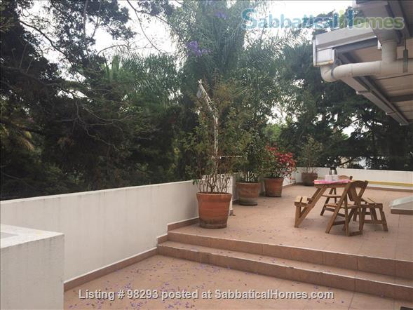 Lovely apartment  in a renovated antique house. Mexico City.  Home Rental in Mexico City, D.F., Mexico 5