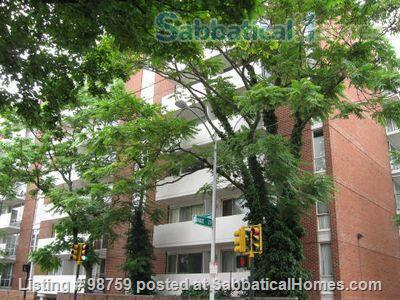 Sunny, Furnished Studio w/ Magnificent Treetop View near Harvard Square Home Rental in Cambridge, Massachusetts, United States 9