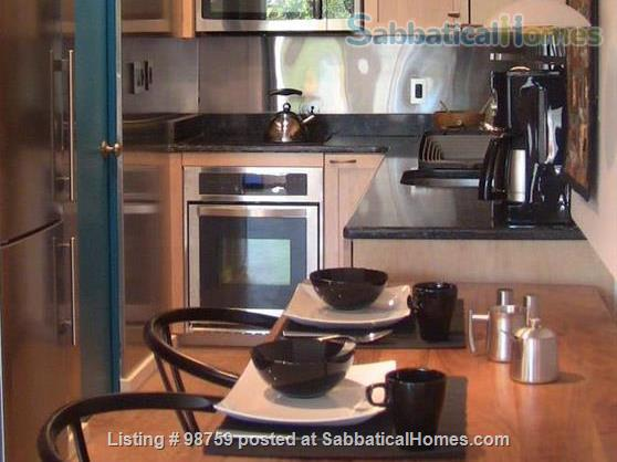 Sunny, Furnished Studio w/ Magnificent Treetop View near Harvard Square Home Rental in Cambridge, Massachusetts, United States 2