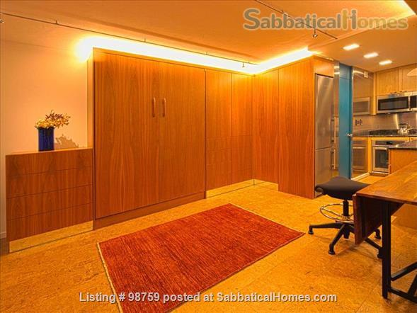 Sunny, Furnished Studio w/ Magnificent Treetop View near Harvard Square Home Rental in Cambridge, Massachusetts, United States 5