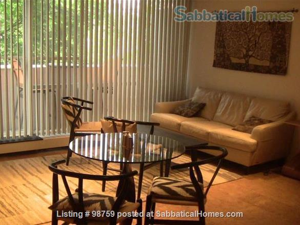 Sunny, Furnished Studio w/ Magnificent Treetop View near Harvard Square Home Rental in Cambridge, Massachusetts, United States 7