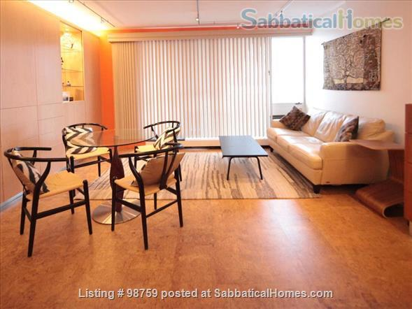 Sunny, Furnished Studio w/ Magnificent Treetop View near Harvard Square Home Rental in Cambridge, Massachusetts, United States 8