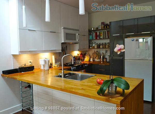 Sunny two-story condo with two private roof terrasses  Home Rental in Montréal, Québec, Canada 1