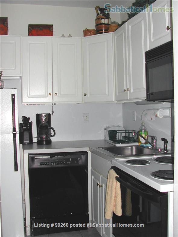 The Back Bay Lookout Corporate Housing (M226) Home Rental in Boston, Massachusetts, United States 4